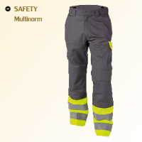 Safety Multinorm
